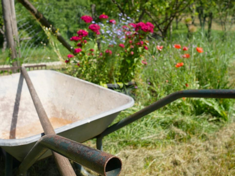 7 tennivaló a kertben az idei nyárra