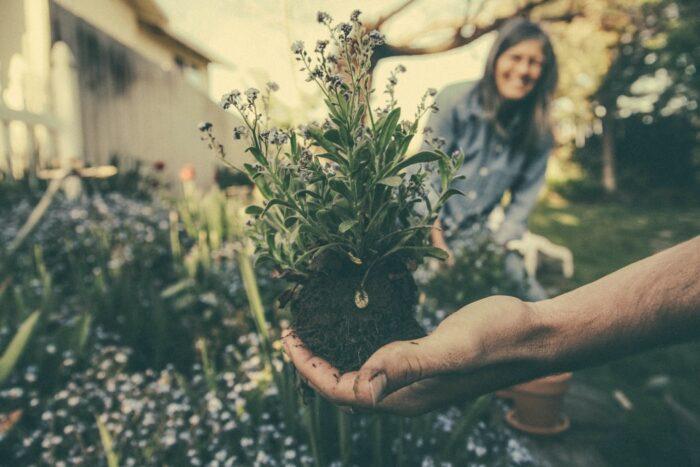Ideje végre tényleg rendbe hozni a kertet, profi segítséggel